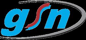 gsn-logo-transparent-300x140.png
